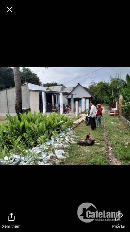 nhà cần tiền nên cần bán gấp miếng đất ở an tịnh trảng bàng tây ninh