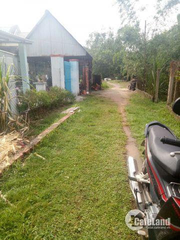 bán đất thổ cư ,gần cổng sau kcn trảng bàng tây ninh (12x28)
