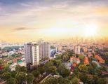 Cần bán gấp một số căn hộ cao cấp ngay tung tâm Q5,LH DIỆU 01263258264