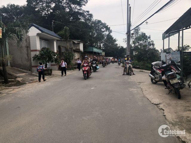 Cần Tiền Trả Ngân Hàng Sang Gấp Lại Lô Đất Phước Tân- Biên Hòa