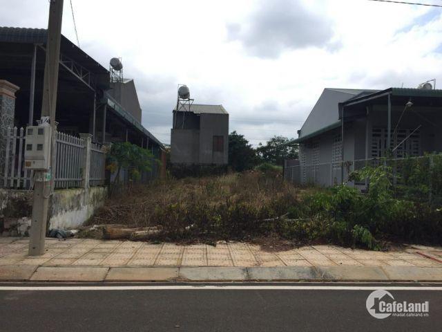 bán gấp lô đất 120m2 tên mt đường Tân Liêm, Phong phú Bình chánh. SHR thổ cử 100%