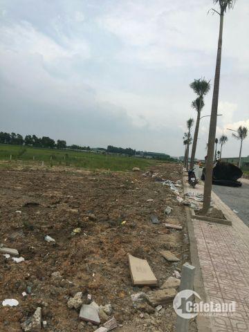 Dự án 1/500 mặt tiền đường Bình Mỹ, Saigon, SHR, 100m2. Lh 0933379931