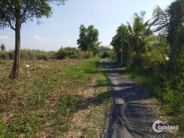 Lô đất thổ vườn 778m2, vị trí đẹp 2 mặt tiền trung tâm xã Nhơn Đức, Nhà Bè, chỉ 5,4tr/m2 (TL)