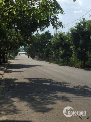 Đất đường Đoàn Khuê, khu Nam Việt Á, giá rẻ cho nhà đầu tư