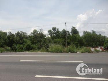 Bán đất Tân Phước thị xã Phú Mỹ - BRVT shr, thổ cư 100% LH: 0906861639