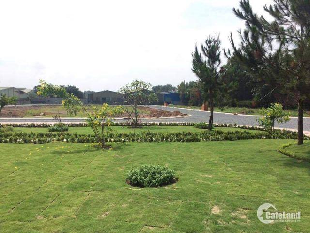 Đất Nền Thuận Giao Thuận An Bình Dương