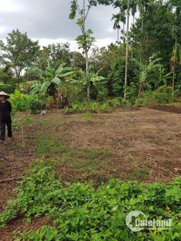Bán Đất hẻm cấp 1Y Wang P.Ea Tam BMT, Dt 5x17,5m chỉ 575 triệu