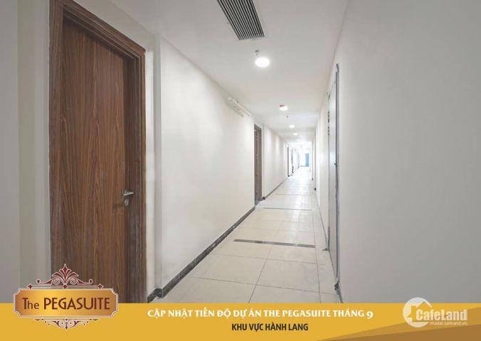 Chuyển nhượng căn hộ The Pegasuite quận 8.nhận nhà tháng 12/2018.chỉ từ 27tr/m2