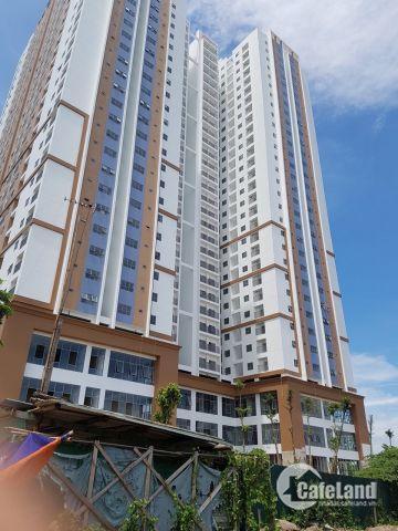 Chung cư Tứ Hiệp Plaza bán đợt cuối, giá chỉ từ 13,5 triệu. Chiết khấu 200 triệu tiền mặt.
