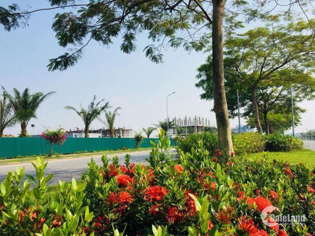 Nhà liền kề đẹp như biệt thự nằm trong khu đô thị chuẩn mực Singapore