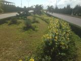 Bán lô đất mặt tiền đường VÙNG TRUNG 2 - Khu đô thị phú mỹ an