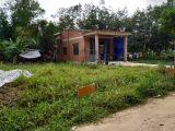 Đất Giá Rẻ Thổ Cư 100% Sát KCN Thành Thành Công