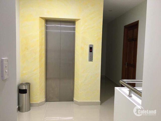 Bán Nhà Phố Phú Mỹ CIQ4, DT: 8m x 19m, căn góc, đang kinh doanh,SHR. Giá: 18.8 tỷ. LH: 0938781609