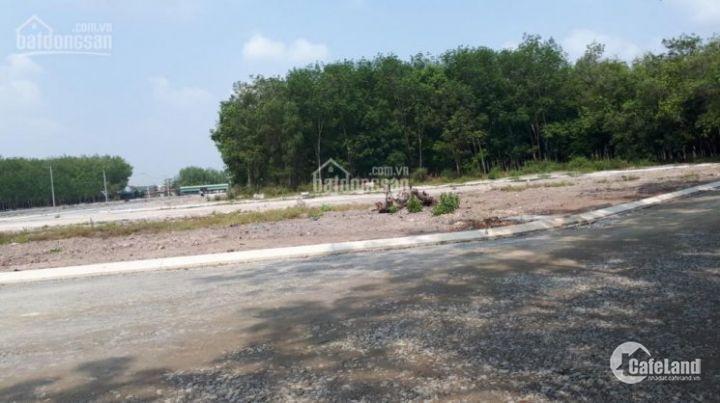 Đất nền TX Bến Cát 400 triệu/nền, có thổ cư, sổ hồng riêng, LH: 0903341321