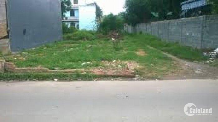 Tôi muốn bán đất thổ cư mặt tiền đường Mỹ Yên-Tân Bửu, Long An 800triệu/100m2