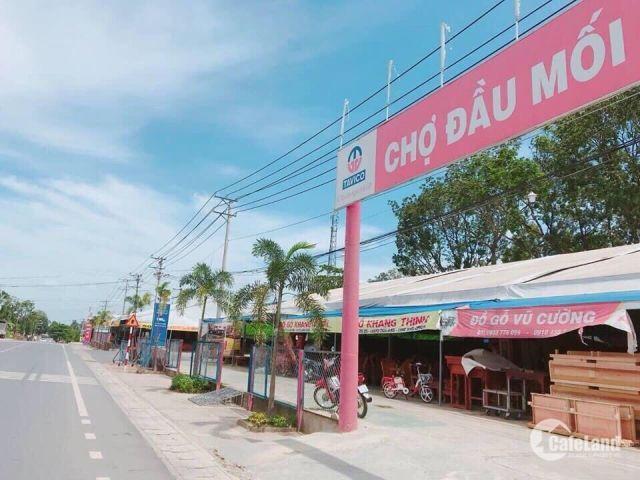 Đất nền Tân Hòa,đường Điểu Xiển,Tp.Biên Hòa,Đồng Nai,thổ cư 100%,chỉ 1ty4 /nền,LH:0981.633.644