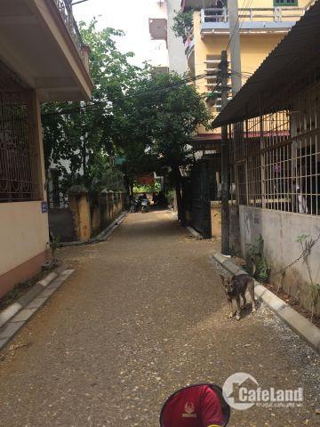 Đất phố Ngô Xuân Quảng, TT Trâu Qùy, huyện Gia Lâm, Hà Nội.
