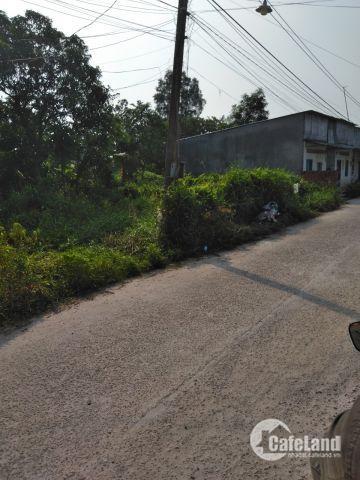Đất đẹp ở Long Phước Long Thành,sổ riêng, Không dính quy hoạch