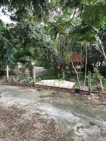 Bán đất chính chủ ngay thị xã Phú Mỹ đường QL51 đi vào 900m, gần khu du lịch sinh thái