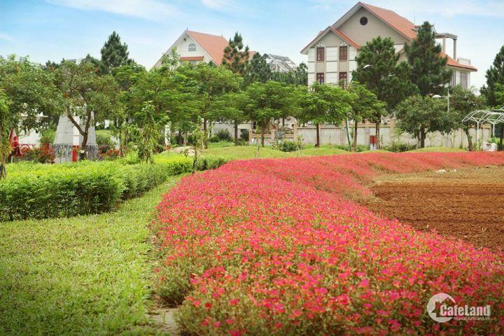 Sở hữu ngay biệt thự sinh thái đẳng cấp bậc nhất Hà Nội, The Phoenix Garden. LH: 0961461594