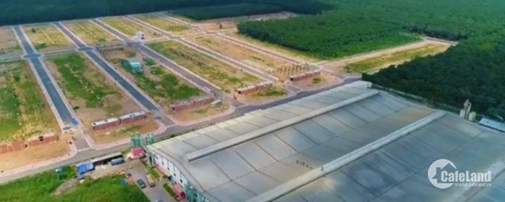 Bán gấp nhà đẹp Tô Vĩnh Diện, Thanh Xuân 42m2 4,5 tầng 4,6 tỷ