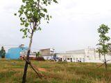 Bán đất xây biệt thự đường KQH Cư xá Đại học – TP. Đà Lạt