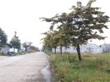 ACB thanh lý một số nền đất đẹp sát Trung tâm Hành chính Quận, KCN sầm uất giá chỉ 450tr/nền bao sổ. LH 0906.852.909