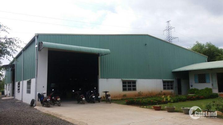 Cần cho thuê xưởng ngay cảng Cái Mép - VT DT 4004 m2