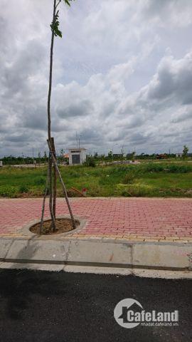 Đất siêu rẻ,ngay tại thị trấn Rạch Kiến đối diện trường học.