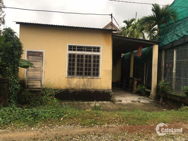 Bán đất Khu Quy Hoạch Thanh Lam.Phường Thủy Phương.
