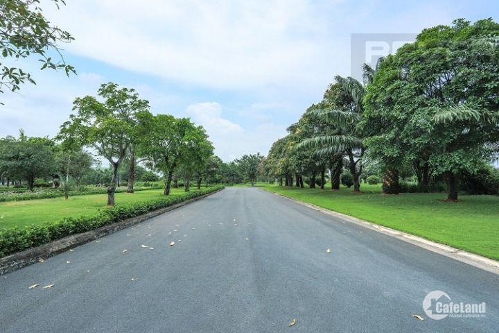 Khu đô thị cao cấp Phú Mỹ Hưng