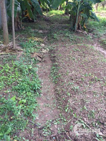 Cần bán lô đất đẹp tại khu TĐC Thạch Bàn-Long Biên.DT 54m2,SĐCC.