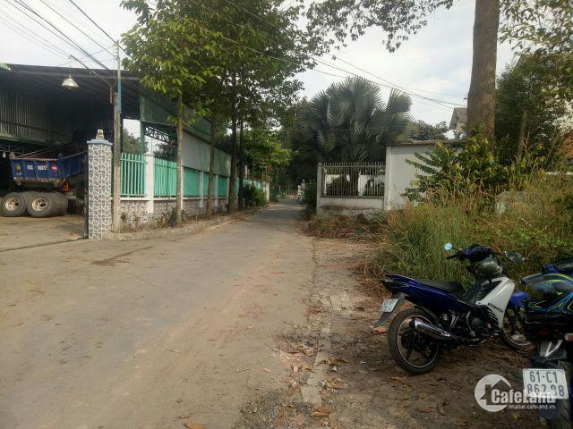 Đất cần bán gấp tại trung tâm phường Tân An