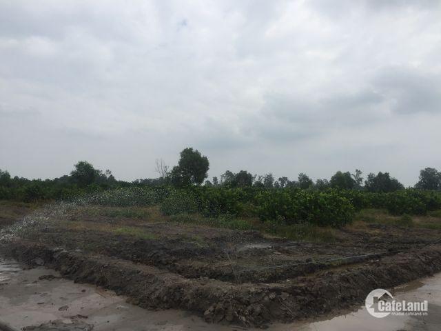 đất vườn bến lức long an 500m2 giá 850tr,đường 9-15m,sổ hồng riêng công chứng ngay,tiện ích đầy đủ
