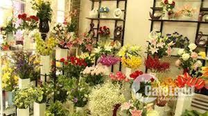 Bán shop hoa 81m2, 1 trệt 1 lầu Vũ Tùng, Bình Thạnh. Giá: 3,6 Tỷ. Liên hệ: 0798655603