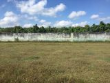 Bán đất sổ đỏ đường Bàu Cạn Long Thành, gần cổng số 3 sân bay, 518m2, 3 triệu/m2