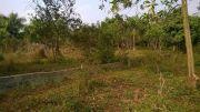 Đất thổ cư Lương Sơn diện tích lớn, ngay mặt đường, đất tựa đồi, chính chủ
