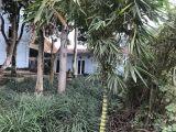 Cần bán đất và nhà hoặc thuê tiện kinh doanh 21X43 m2 tại tổ 30 ,phường yên ninh ,tp yên bái chính chủ lh :0967994444 (mr hoàng )