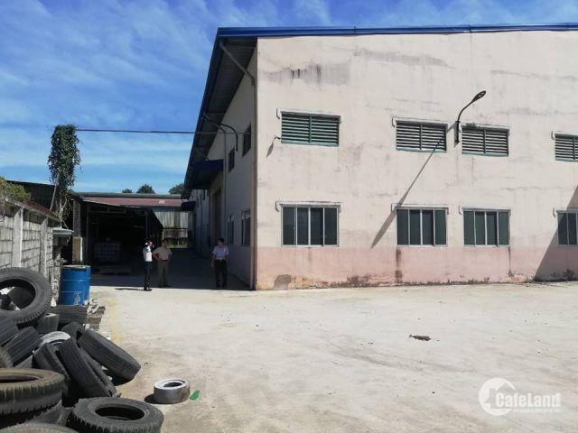 Cho thuê kho hơn 10.000m2 gần ngã tư Phan Đình Giót và đường Liên Huyện An Phú, Bình Dương.