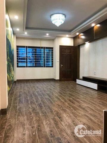 Bán nhà chính chủ cực mới, cực đẹp phố Liễu Giai, DT: 45m2, Giá 4.5 tỷ.
