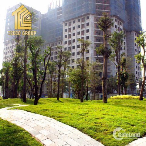 Bán chung cư Tecco Thanh Trì giá ưu đãi từ chủ đầu tư