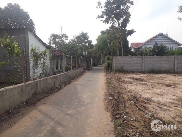 Đất xây xưởng, xây phòng trọ giá rẻ ngay trung tâm phường Tân An