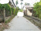Lô đất vuông vắn kiệt ô tô Thủy Vân với giá 870 triệu