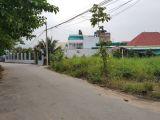 Bán đất biệt thự Vườn Lài An Phú Đông Q12