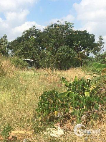 Bán lô biệt thự Công ích Q4, diện tích 12x20, đường 12m, vị trí ngay sông Rạch Dơi 52tr 0931442346 Phương