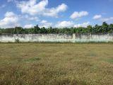 Bán đất Bàu Cạn-Long Phước gần cổng số 3 sân bay Long Thành 3 triệu/m2