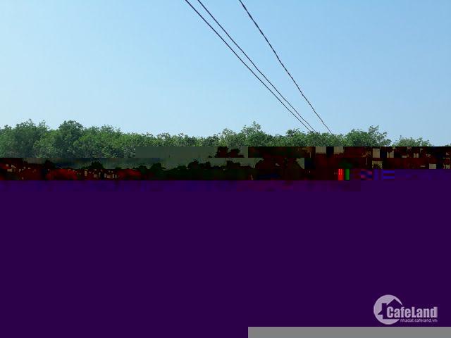 100 nền Đất nền nhà phố và Biệt Thự Biên Hòa New City. giá 12tr/m2. lh 090931430