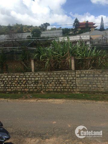 Bán 2 lô đất DT lớn, vị trí đẹp, tiện xây nhà hàng, KS tại Đà Lạt