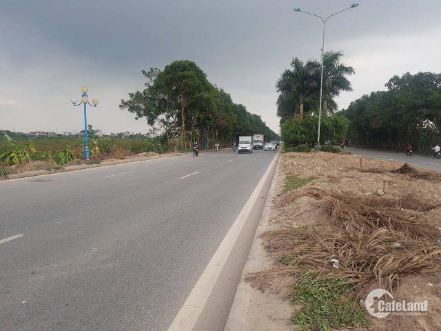 Dự án DIAMOND LAND Đông Dư đang làm mưa làm gió trên thị trường hiện nay.