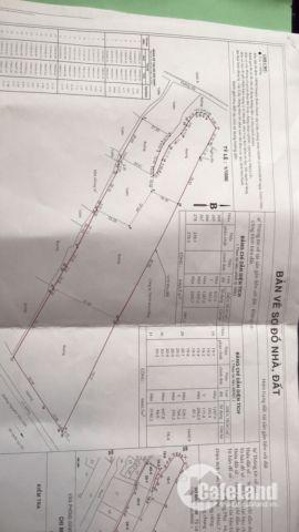 Bán đất Phong Phú, Bình Chánh, DT; 1.2ha, Giá 5tr/m2; LH; 0933334829